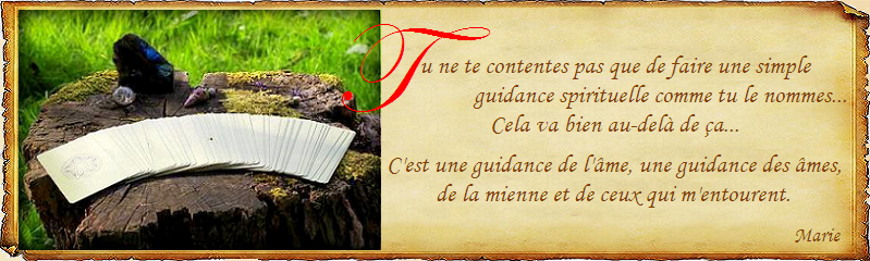 Guidance de l ame